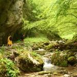Valea Sighistelului 2