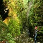 Valea Sighistelului 1