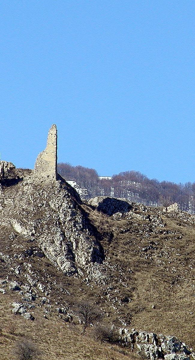 Cetatea Coltesti 2