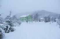 Shanti winter 2