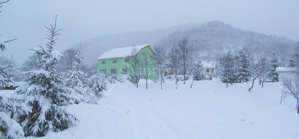 Shanti Iarna 2