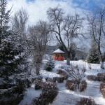 Shanti Foisor -pastel de iarna