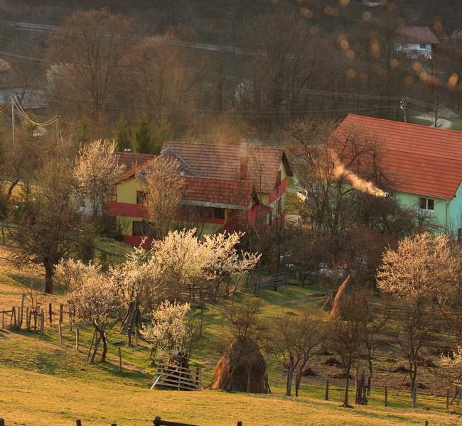 Spring in Apuseni Mountains